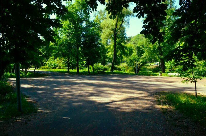 Природа Наводницкого парка