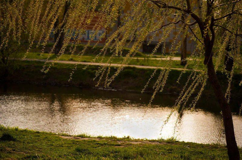 Озеро в парке Победы на Дарнице