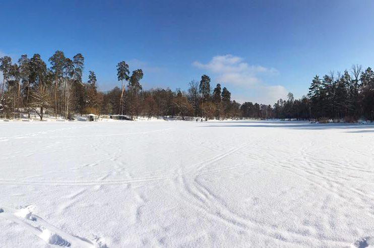 Зимняя природа Пущи-Водицы