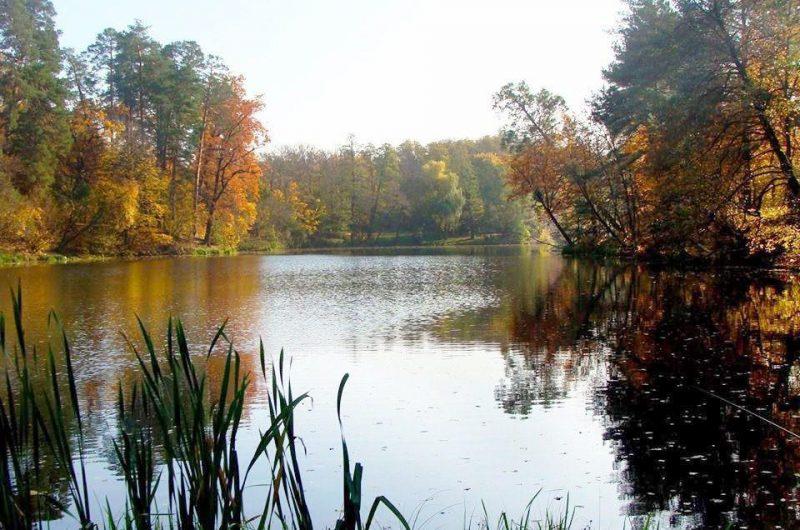 Озеро в Пуще-Водице
